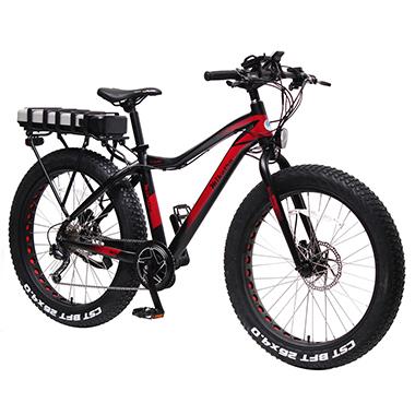 Motorcenter Schiettecatte - E-bikes
